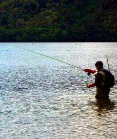 Fishing for clients - lures for attracting business